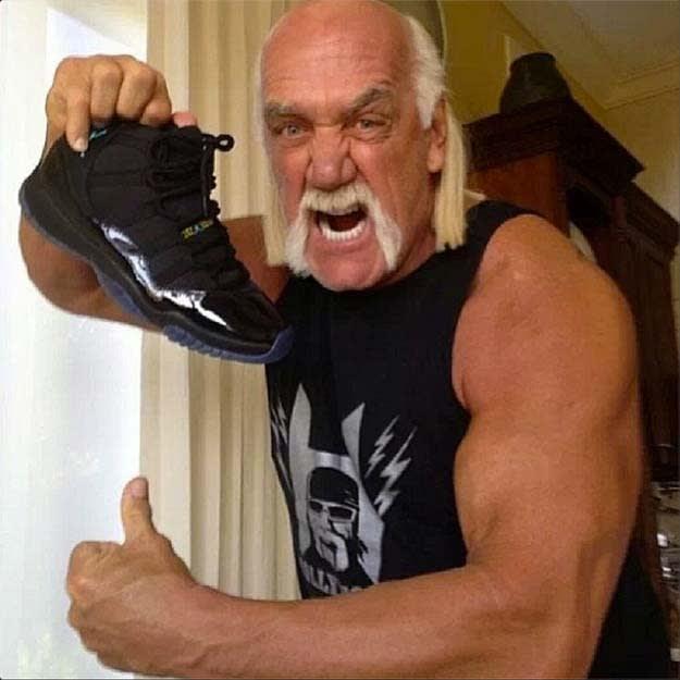 Hulk Hogan Gamma 11