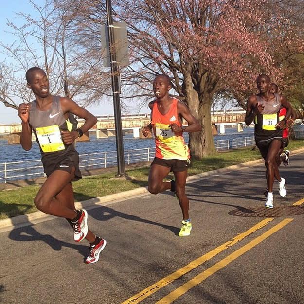 Cherry Blossom Race