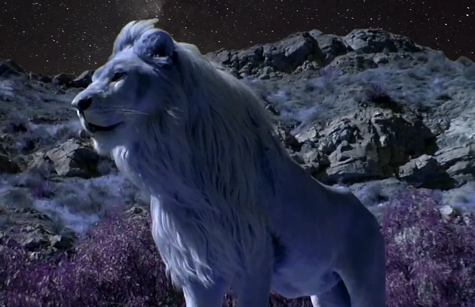 "Premiere: Watch Spokazis Video For ""Fire On The Mountain"" news"