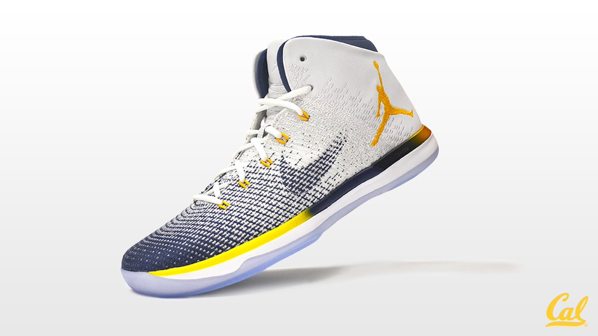 Cal Air Jordan 31 Profile
