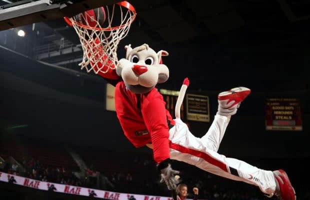 Blaze the Trail Cat - Gallery: Ranking Every NBA Mascot ...
