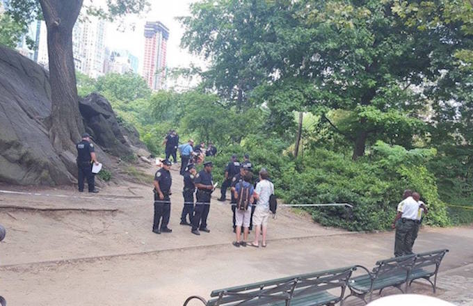A Man Is in Critical Condition After a Mystery Explosion in Central Park