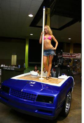 Stripper Pole 25 Inventive Examples Of Furniture Made