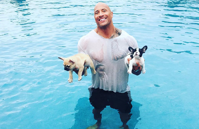 The Rock Spent His Labor Day Saving Two Adorable Puppies From Drowning