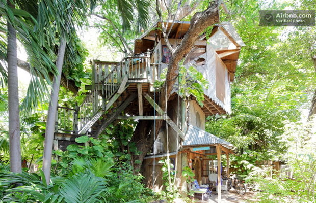Lush Permaculture Farm Treehouse The Coolest Treehouses