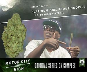 Episode 4: Platinum Girl Scout Cookies