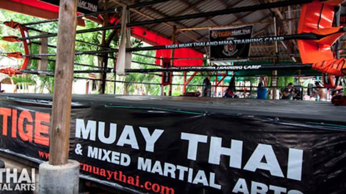 Tiger_Muay_Thai