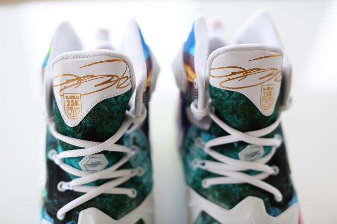 8b010885fa5 Nike LeBron 13