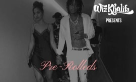 Wiz pre-rolleds