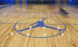 Laney High School Air Jordan Court