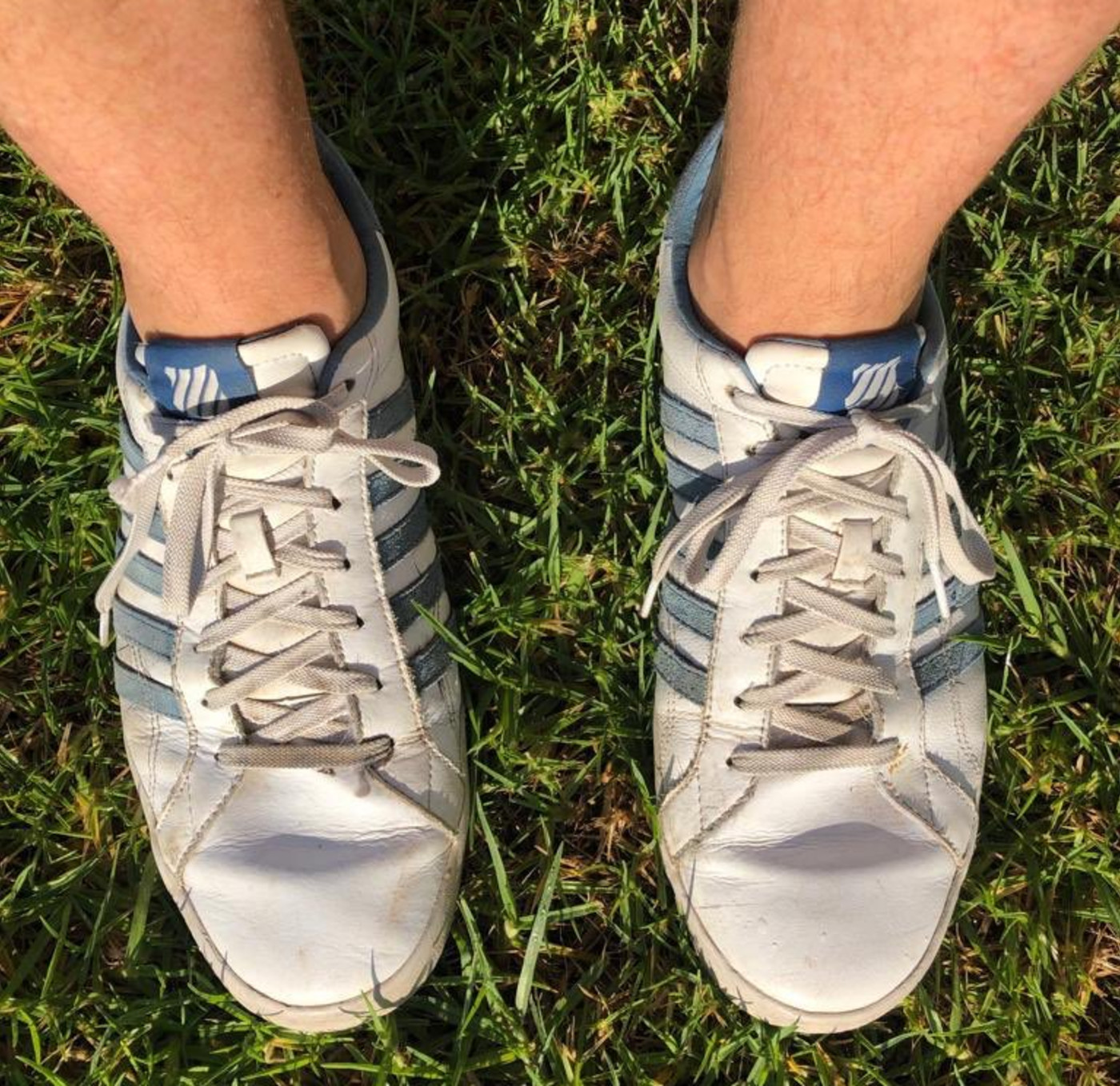 Scott Morrison K-Swiss Shoes