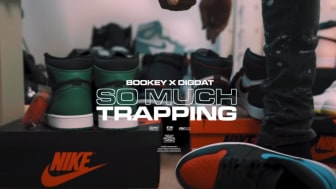 bookey-digdat-so-much-trapping-1