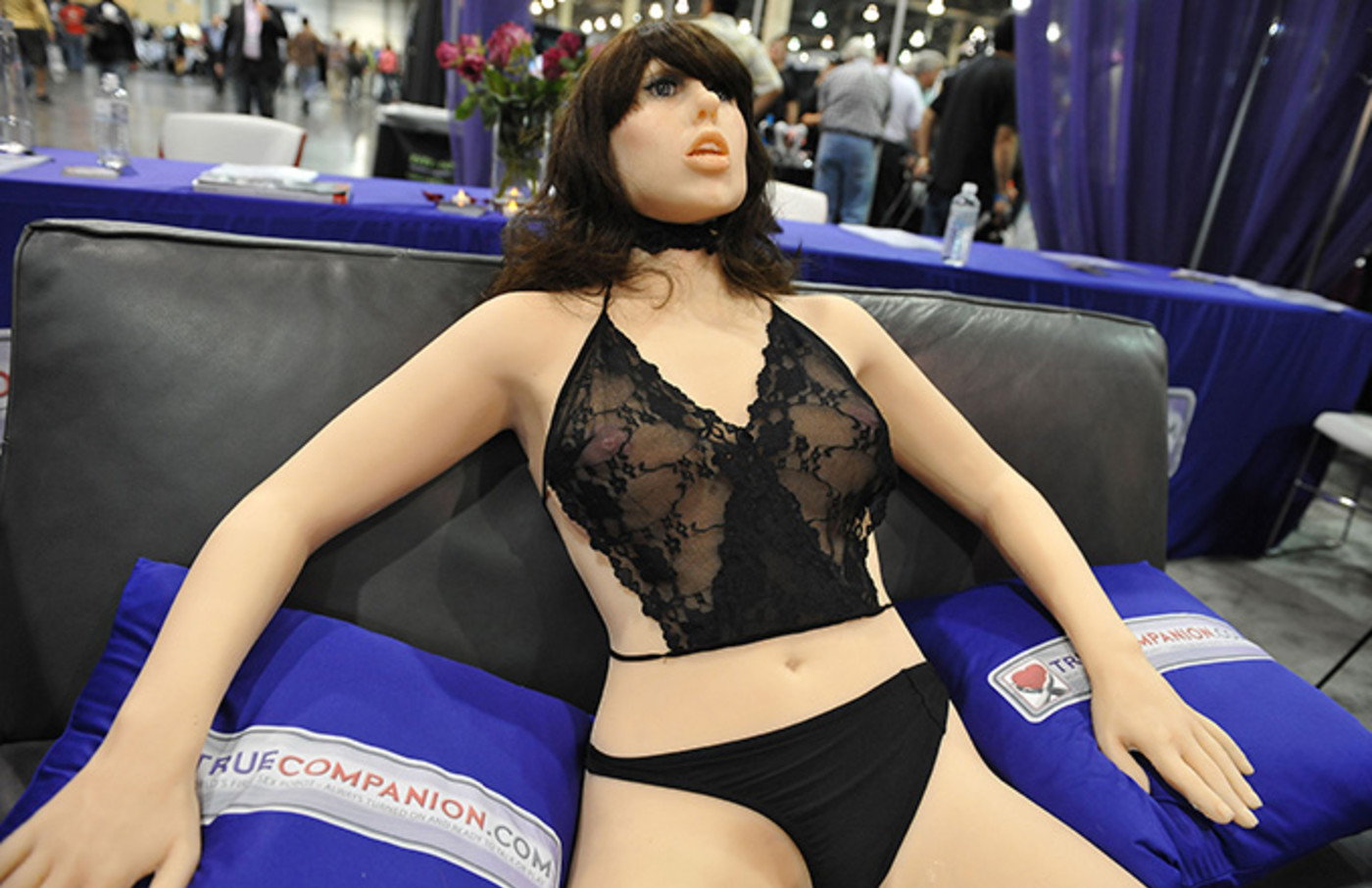 This is a photo of Sex Robots.
