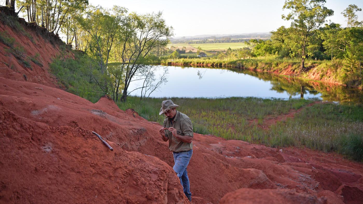 A paleontologist in Brazil