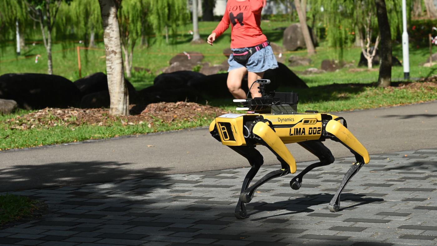 Woman jogs past a four-legged robot called Spot