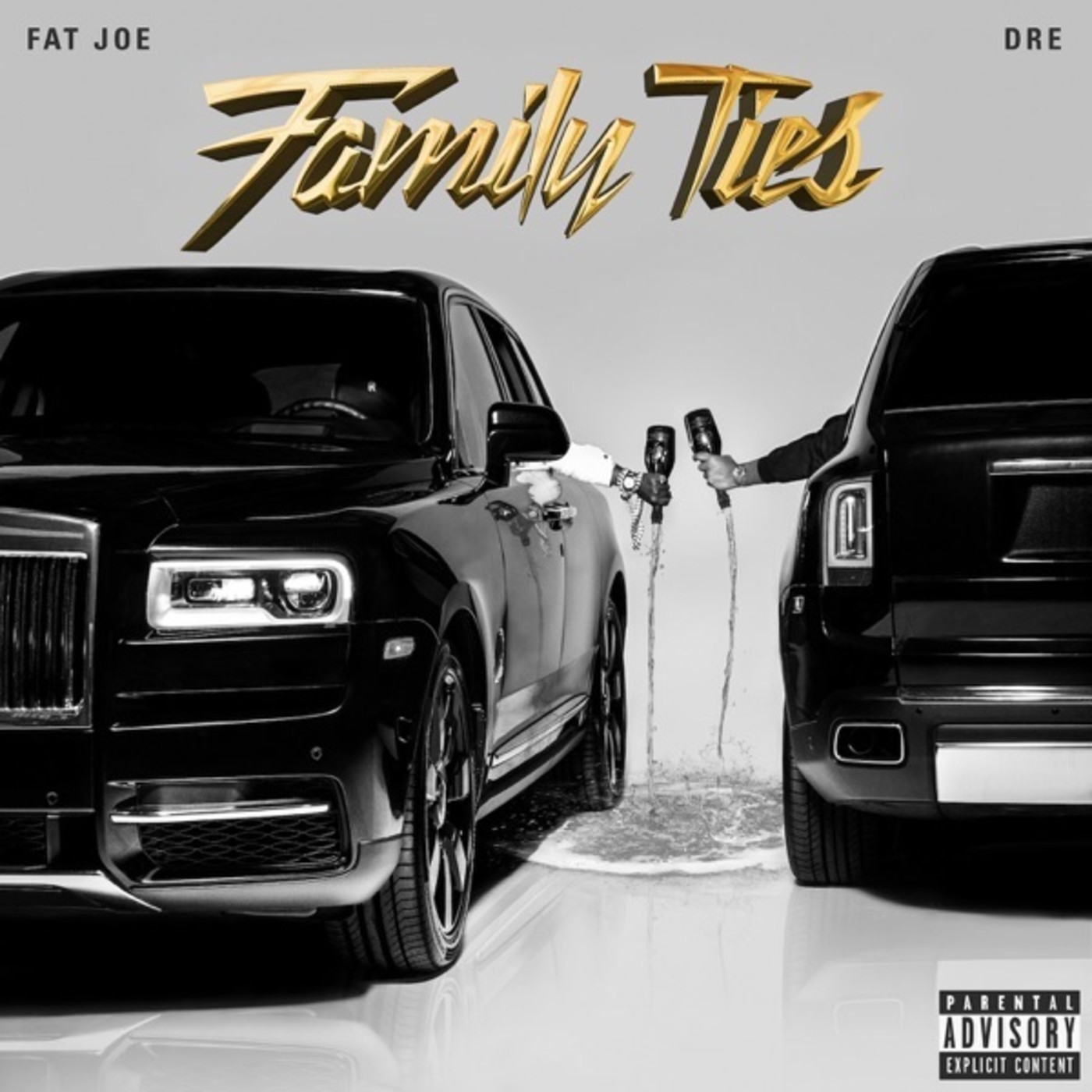 Fat Joe and Dre 'Family Ties'