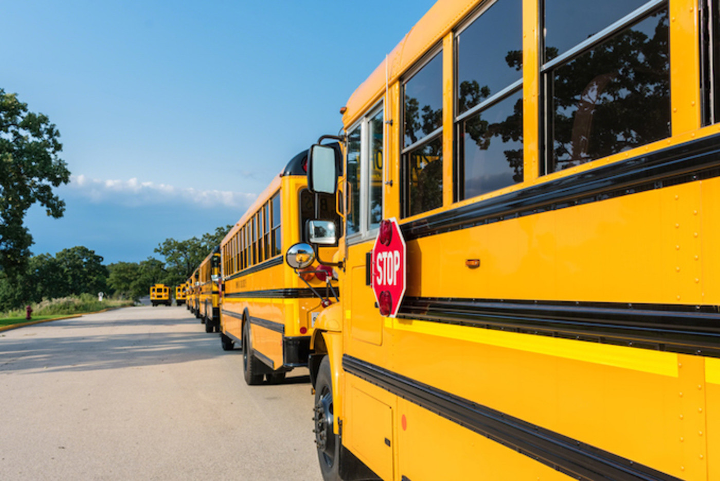This is a picture of a school bus.
