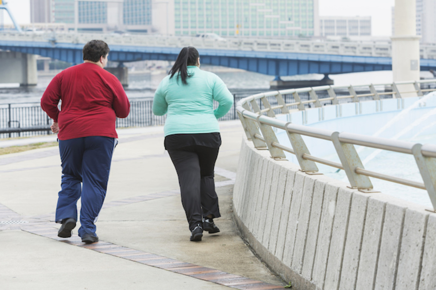 This is a picture of an overweight couple.