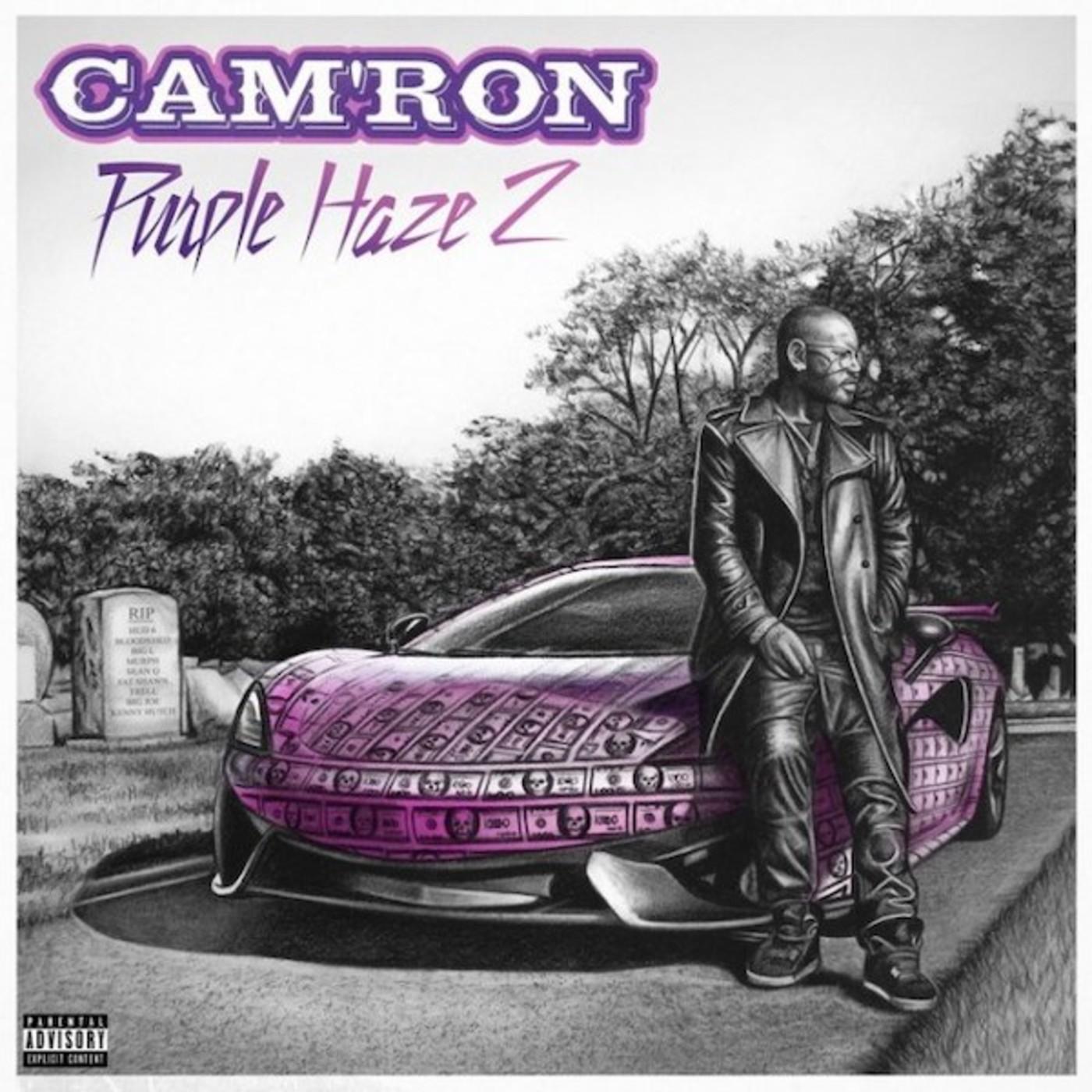Cam'ron 'Purple Haze 2'