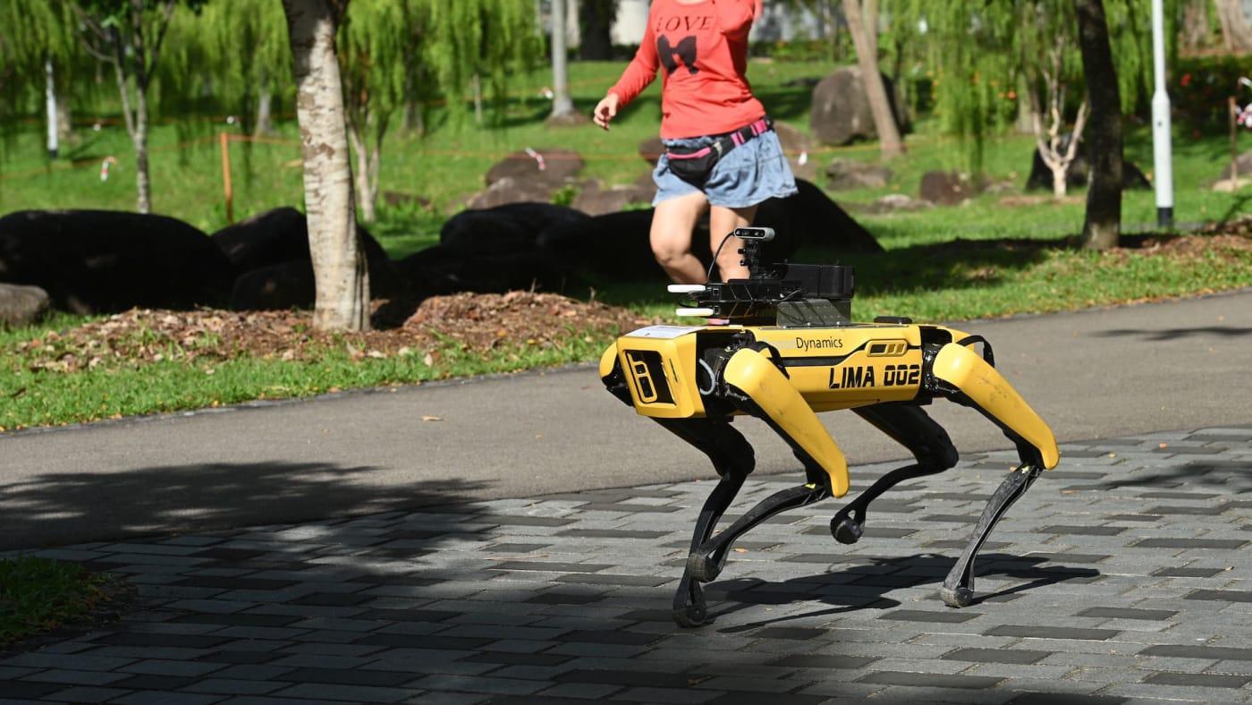 Woman jogs past a four legged robot called Spot