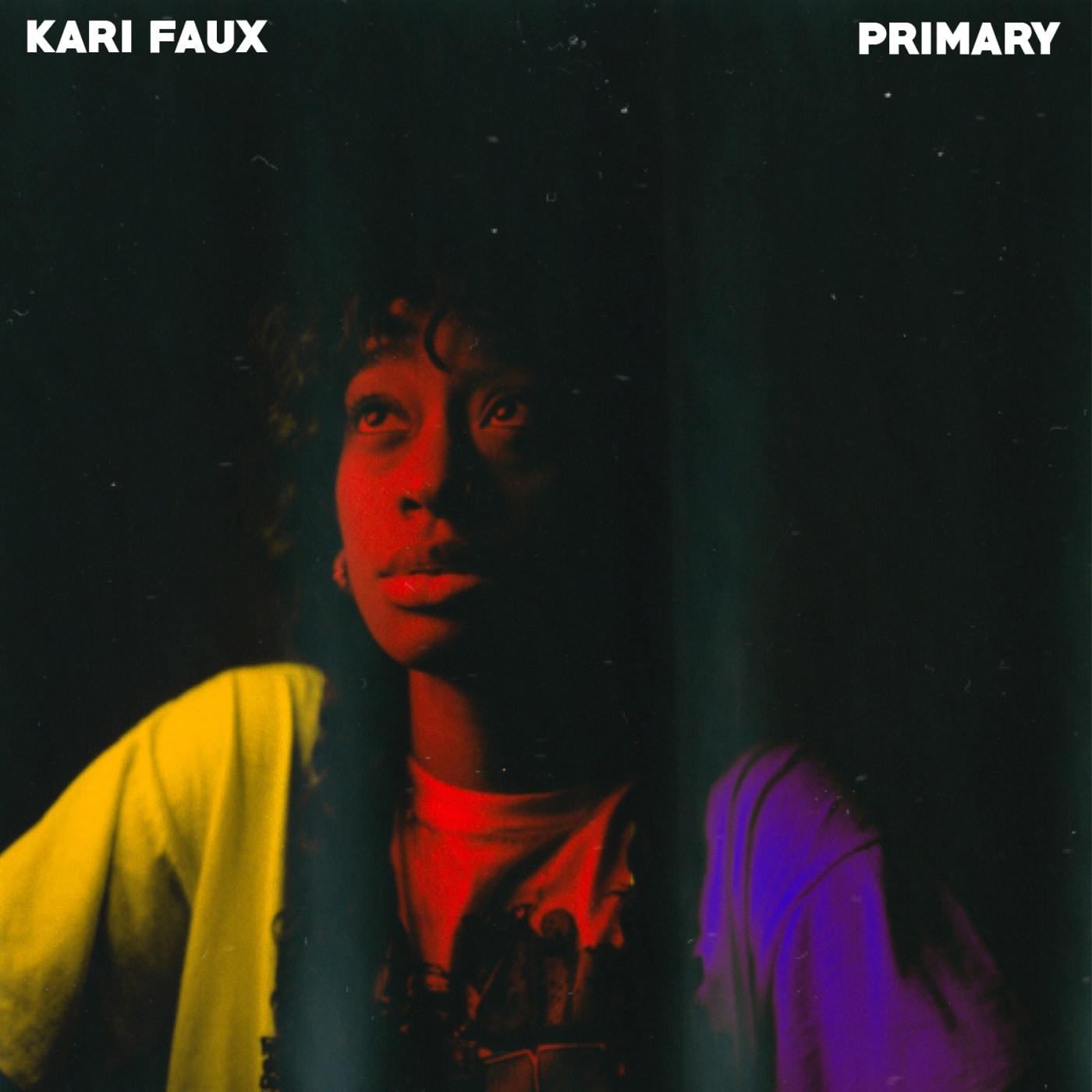 kari faux primary cover