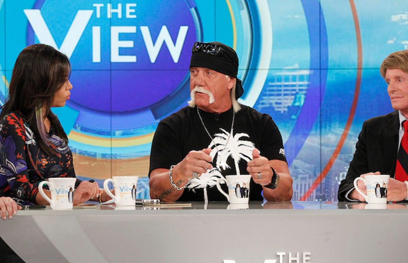 Hulk Hogan the view