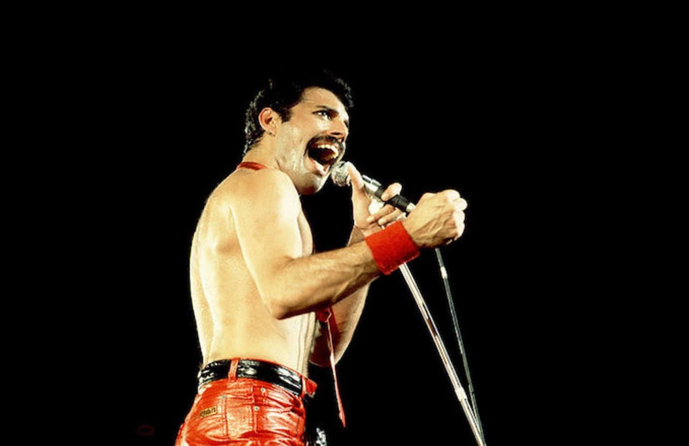 Freddie Mercury of Queen on 9/19/80 in Chicago, Il.
