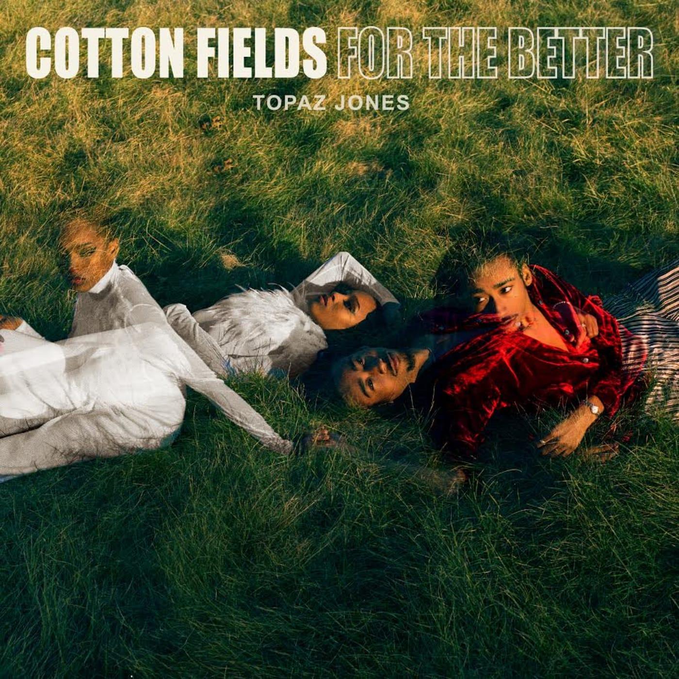 cotton fields topaz