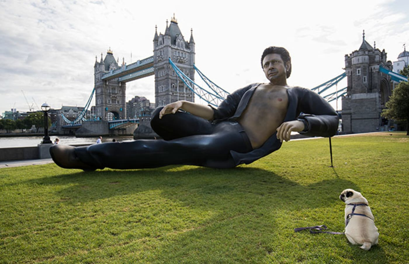 This is a photo of Jeff Goldblum.
