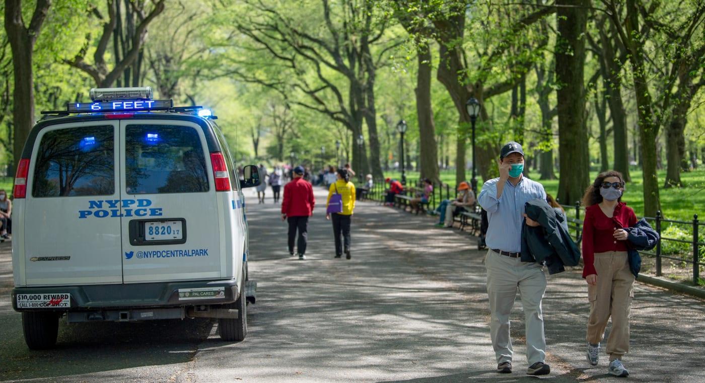 Central Park Bird Watcher