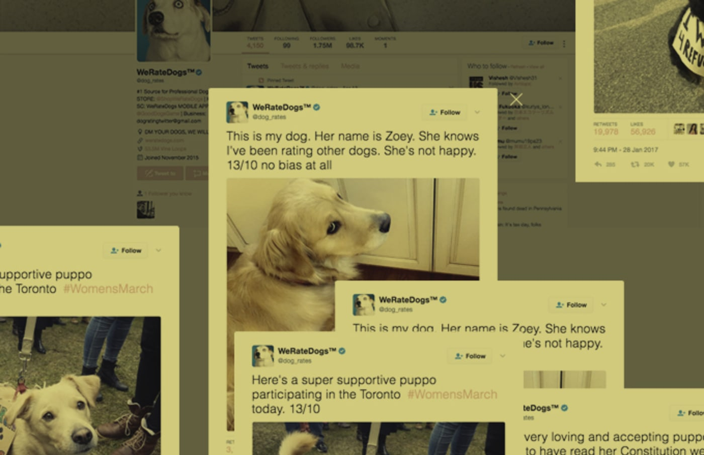 Dog Rates