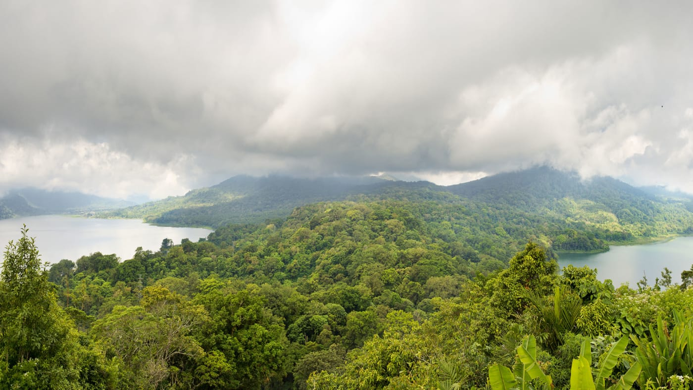 Panorama of two lakes surrounded by rainforest in North Bali.