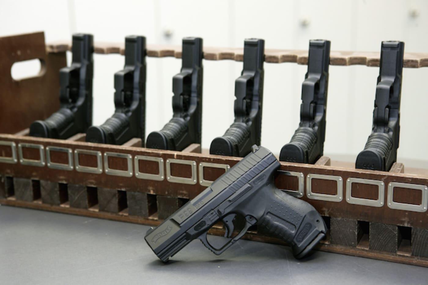 Guns Domestive Violence
