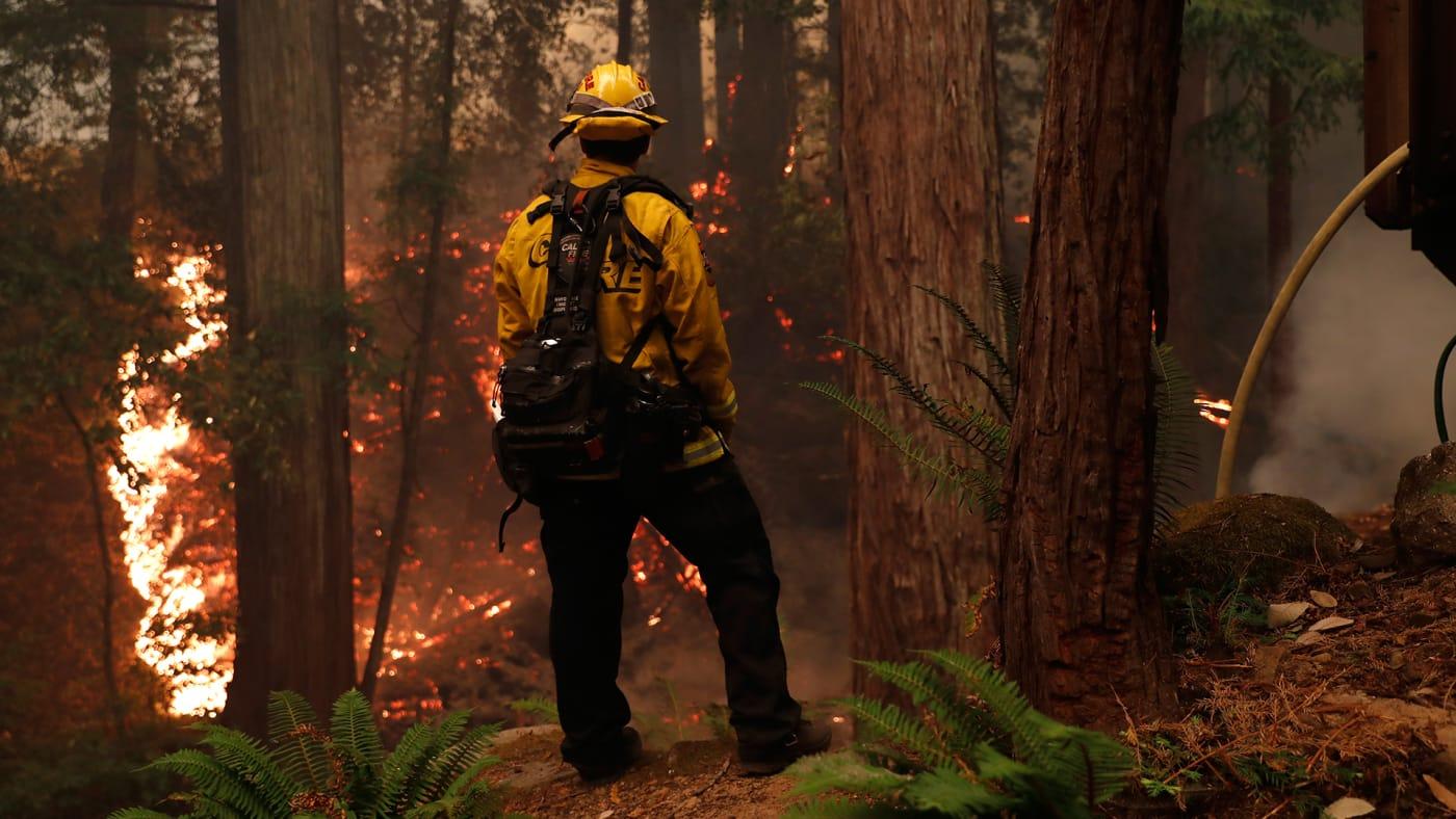 Cali Fires