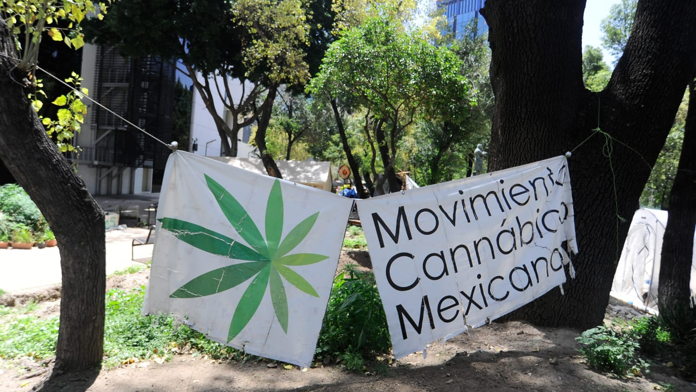 A camp outside the country's Senate building, Mexican marijuana activists have been camping outside the Senate.