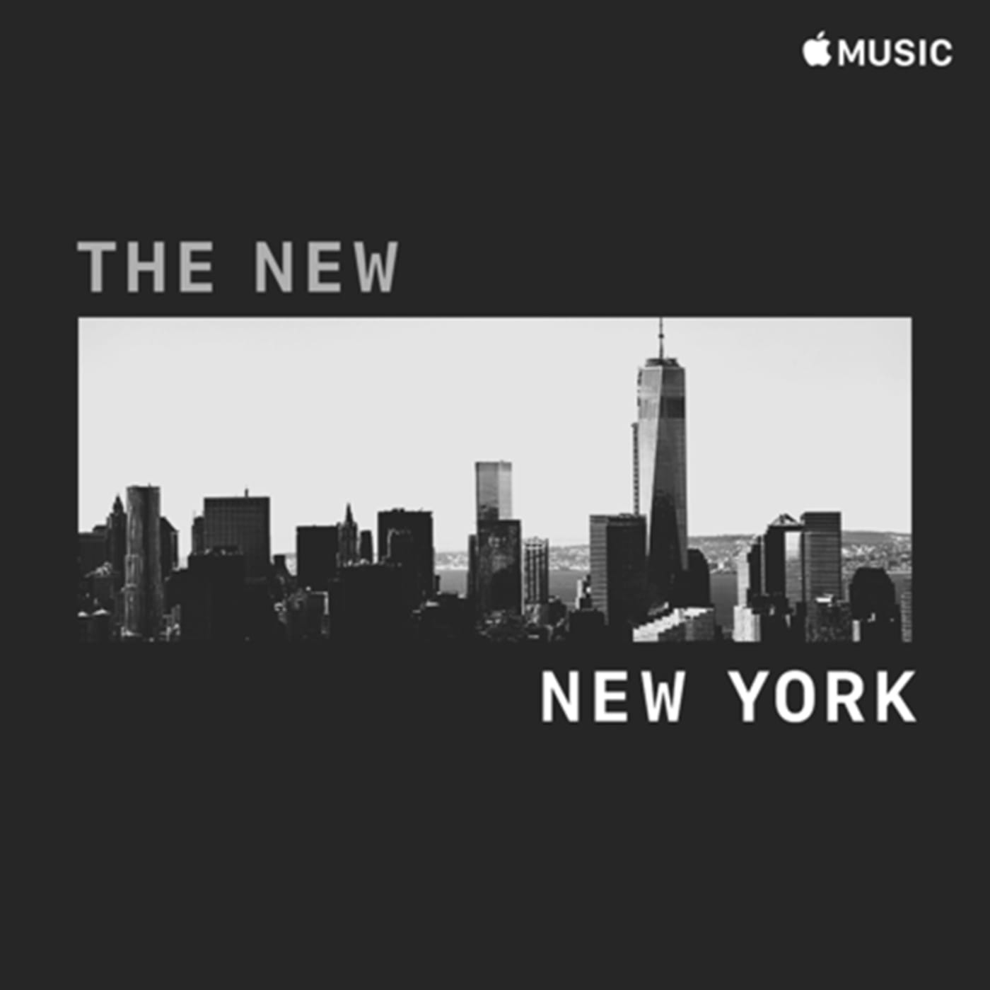 sc dynamics the new new york eng sq