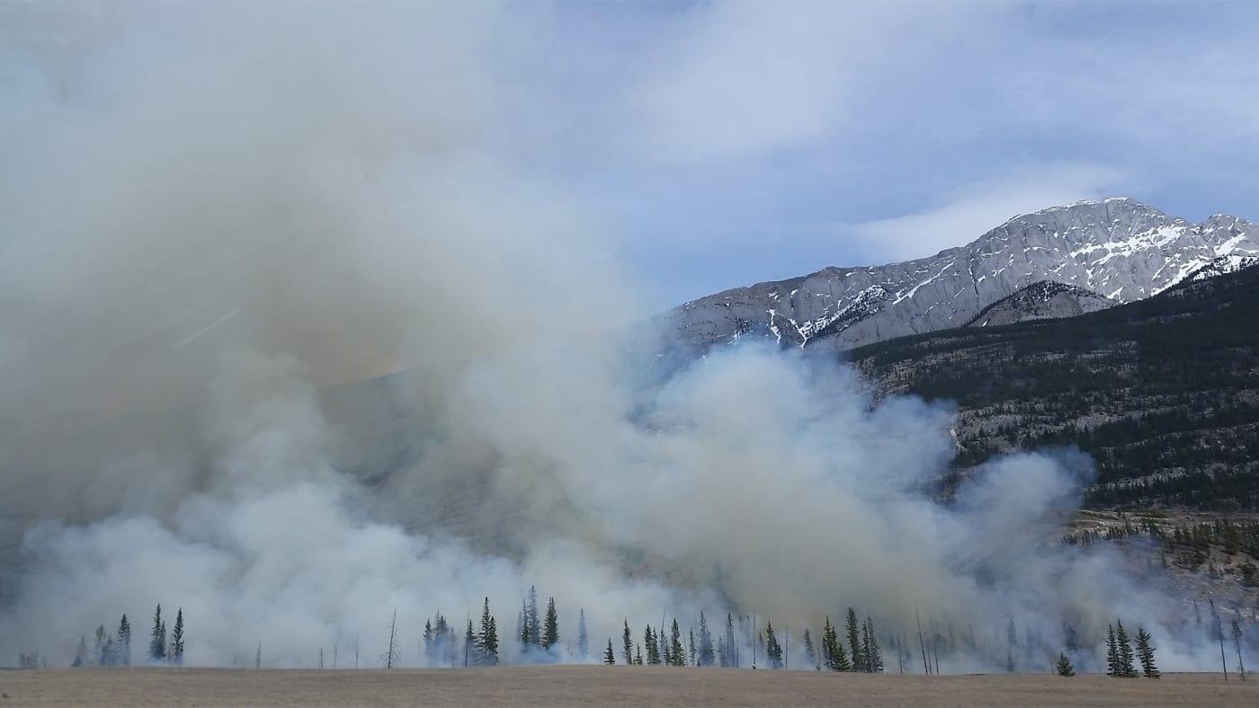 A wildfire with smoke