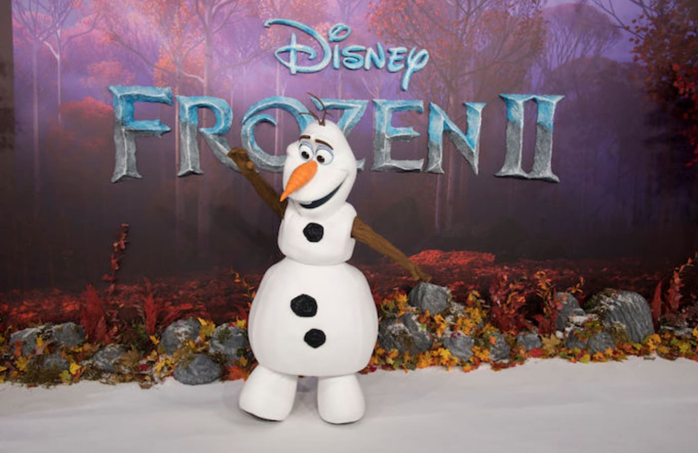 This is a picture of Olaf.