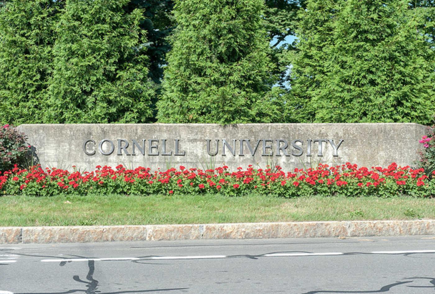 Cornell University (July 2013)