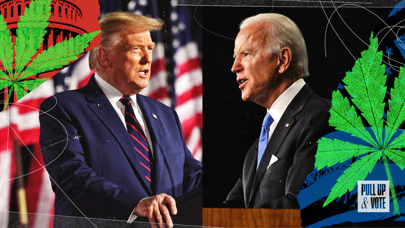 Donald Trump and Joe Biden on Cannabis SAFE Banking Act