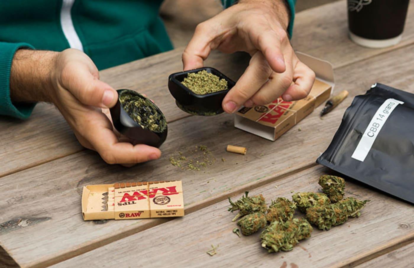 This is a photo of Marijuana