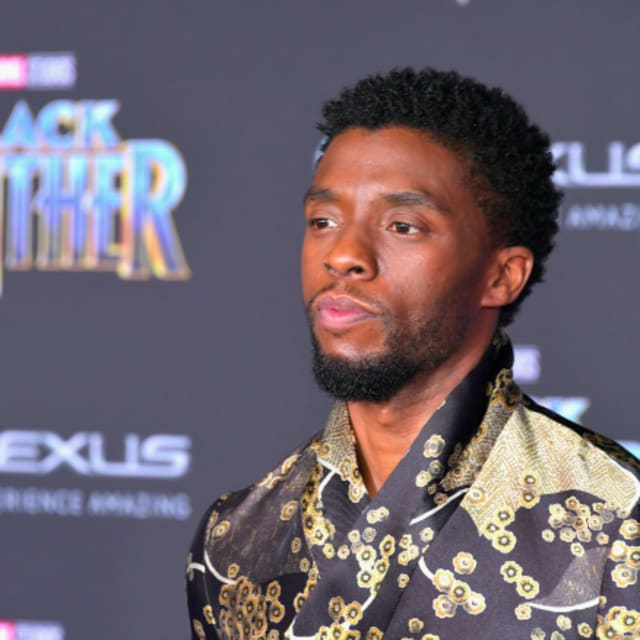 Last Night Was The Black Panther Premiere And It Was: Critics Are Calling 'Black Panther' One Of The Best Marvel