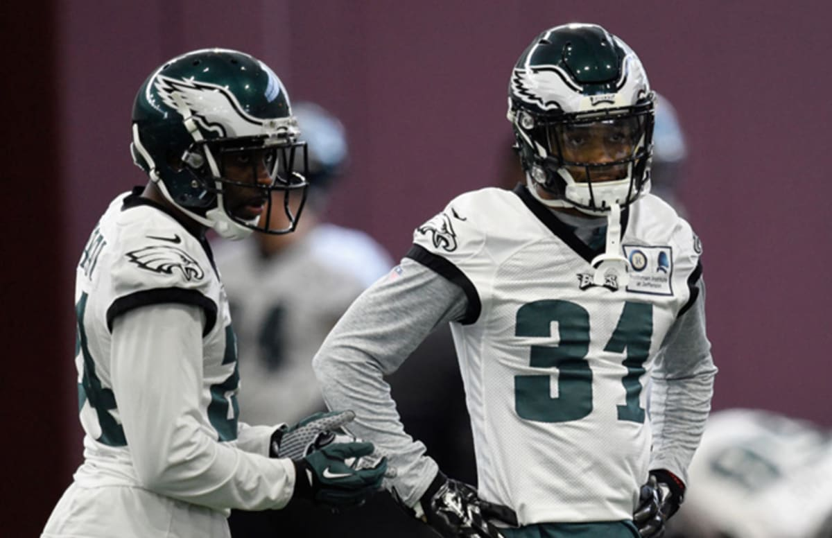 Eagles Fan Allegedly Assaults Girlfriend and Puts Dog in Microwave After Team's Loss