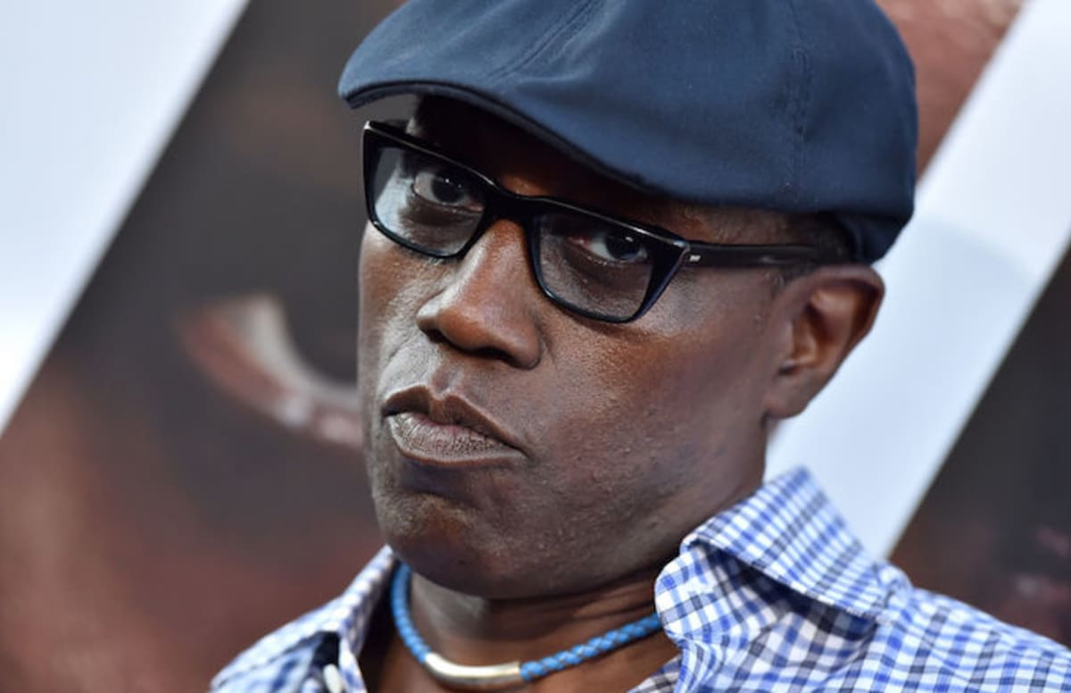 Wesley Snipes Ordered to Pay $9.5 Million to the IRS