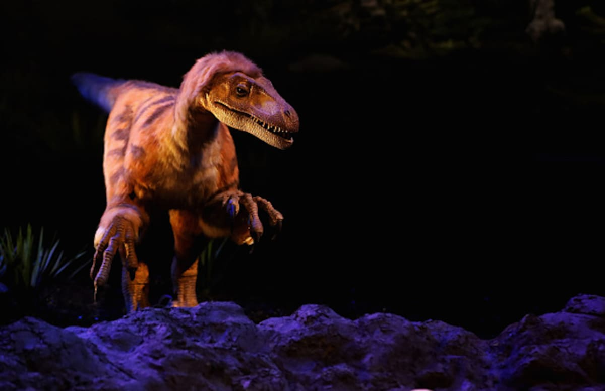 Scientists Reveal Why Dinosaurs Had the Worst Luck Ever