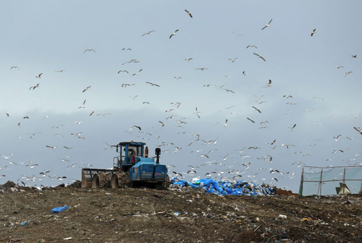 Man may resort to digging up entire landfill to find his $80 million bitcoin hard drive.