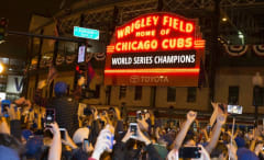 Cubs fans celebrate their historic World Series win.