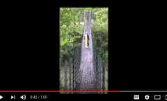 Image via YouTube