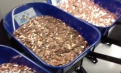 Pennies at the DMV