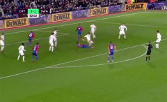 Crystal Palace's Wilfried Zaha scores a crazy goal against Swansea City.